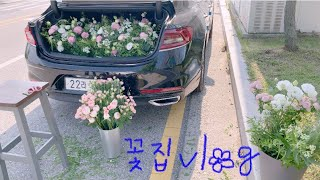 [flowershop vlog] 핫여름에 트렁크프로포즈…