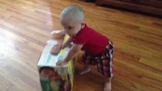 Baby Playing With Box.