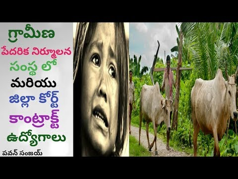 Local Jobs - Contract Jobs in Rural Poverty & District Court | in Telugu By Pa1 - Job Search