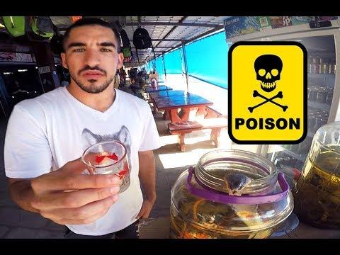 מטיילים בתאילנד - שתיתי רעל !!!  - ולוג #26