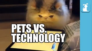 Pets Vs. Technology (Funny Compilation!)