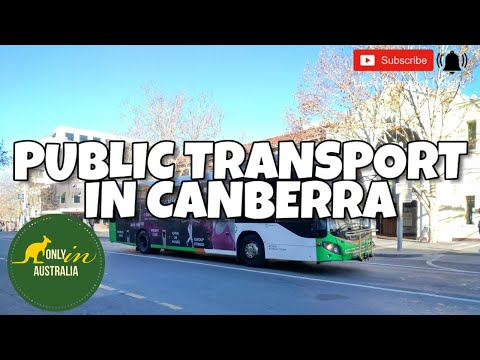 GETTING AROUND IN CANBERRA | TRANSPORT CANBERRA | PUBLIC TRANSPORT IN CANBERRA | BUS | LIGHT RAIL