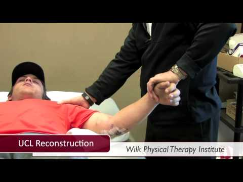 Wilk Physical Therapy Institute Online