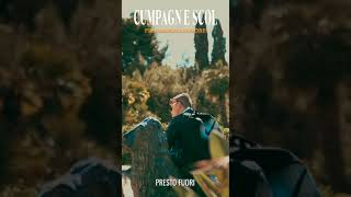 """""""Cumbagn e scol"""" di Francesco d'Amore"""