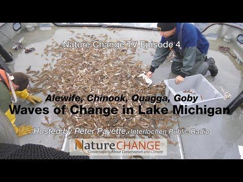Nature Change TV Episode 4 - Waves Of Change In Lake Michigan