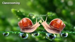 Онлайн Курс А2.1, Урок 1.1 -- Nice to meet you -- новите думи от урока