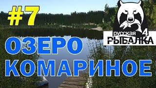 Російська рибалка 4. Годину з Юлією Сисоєвої. Стрім 7.