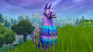 THE SAD LIFE OF A LLAMA - A Fortnite Short Film