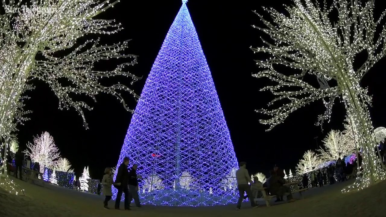 enchant world s largest christmas light maze youtube