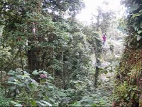 Tarzan swing Costa Rica