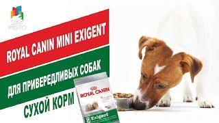 Royal Canin Mini Exigent для привередливых собак   Обзор корма для собак    Dry food for dogs