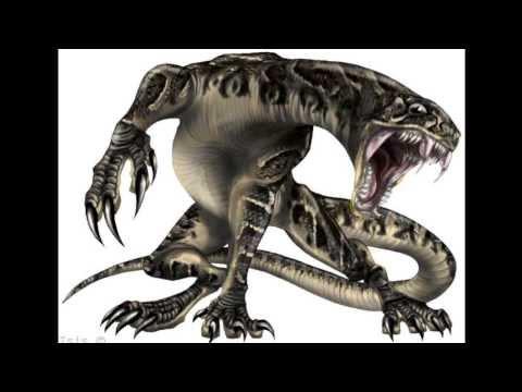 الثعابين في الجزيرة العربية السامة والغير السامة 2