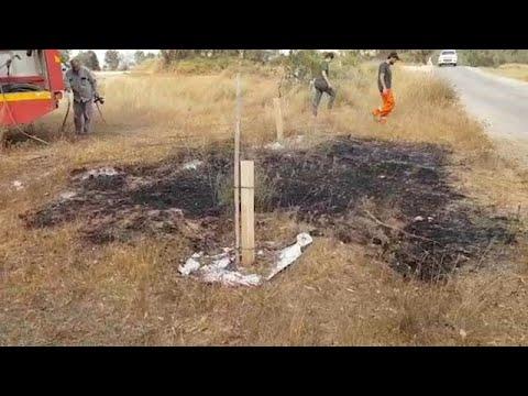 צוותי כיבוי אש ביער בארי
