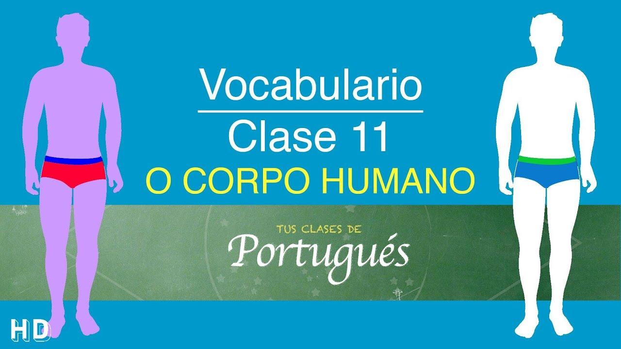 Clases de Portugués - Case 11.3 - Vocabulario: Partes del Cuerpo ...