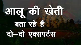 आलू की खेती | Potato Farming | Aaloo Ki Kheti | Potato Farming से जुडी पूरी जानकारी
