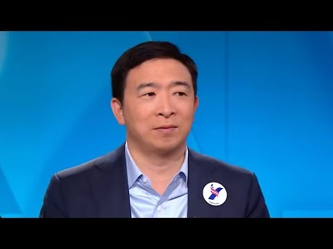 What does Andrew Yang believe? Where the candidate stands on 5 issues