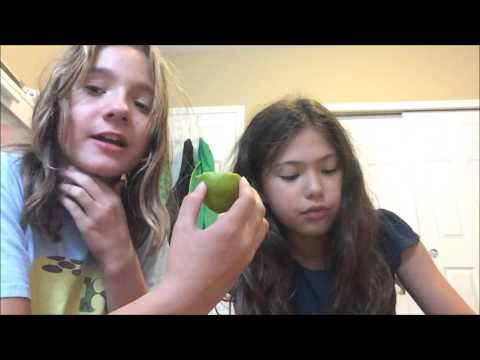 Miracle Berry Challenge with Madd!