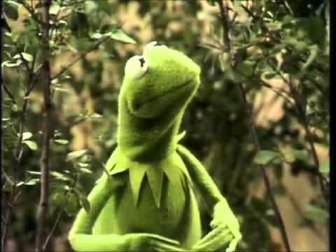 Kermit the Frog Sings Luke Bryan -  Huntin', Fishin' and Lovin' Every Day