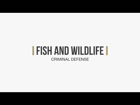 Washington Fish & Wildlife Lawyers | The Law Offices of Jason S. Newcombe