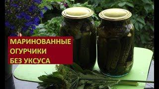 МАРИНОВАННЫЕ ОГУРЧИКИ БЕЗ УКСУСА на зиму (08.08.2017)