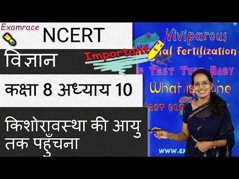NCERT कक्षा 8 विज्ञान अध्याय 10: किशोरावस्था की आयु तक पहुँचना | सीबीएसई
