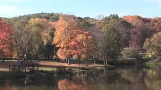 Autumn with Tar & Tombak