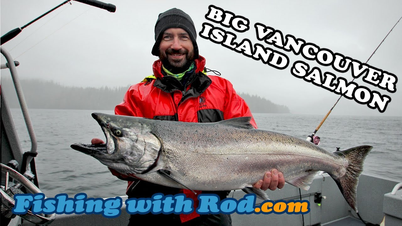 Vancouver Island Salmon Fishing Report