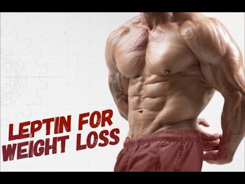 leptin diet weight loss Do Leptin Supplements Work for Weight Loss?
