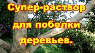 для побелки деревьев, дешевый,легко готовится,долго держится супер раствор