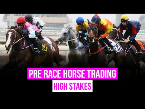 Pre Race Horse Trading - High Stakes