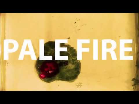 Pale Fire - Clucky (Official Video)