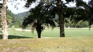 Golf cart self-driving Japan