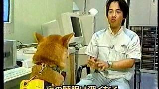 ニュース犬ブーニー 総集編2 Boonie the reporter dog 2