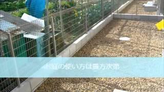 尼崎市田能1の新築賃貸「ナーヴィス」2LDK(尼崎市立園和北小学校)