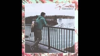 Shawn Mendes - Say Something (Audio)