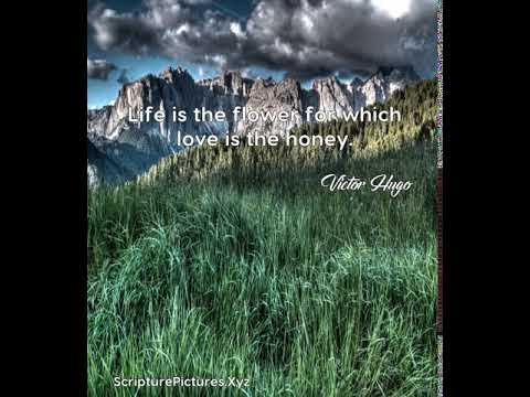 Victor Hugo: Life is the flower for which love is the honey....