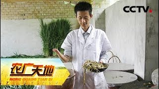 《农广天地》 20190710 独手撑起养羊梦| CCTV农业