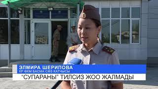 """""""Супараны"""" тилсиз жоо жалмады. NewTV"""