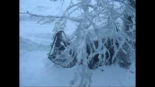 Трактор МТЗ  чистит снег Январь 2011