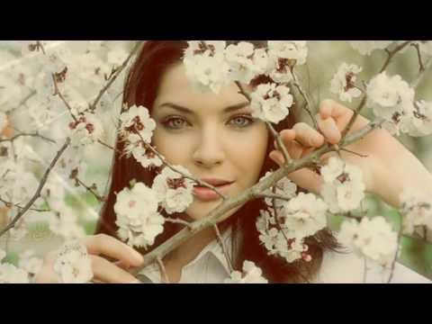 Ю.Александрова Один раз в год сады цветут. Самый лучший день
