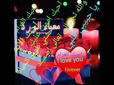 مساء الورد يا حبيبي قلبي والله واحشني عليك وانا أيضا احبك الغرام