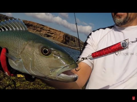 GT POPPING MOLOKAI WITH HOME MADE LURES