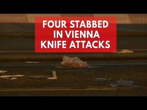 Four people seriously injured in Vienna knife attacks
