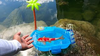 DIY MINI AQUARIUM Fish POOL PO…