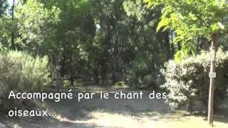 Vidéo Camping des Sources.mov