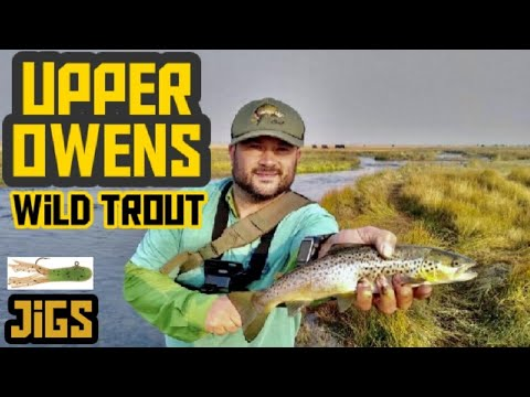 Upper Owens River Fishing   Eastern Sierra   Jigs