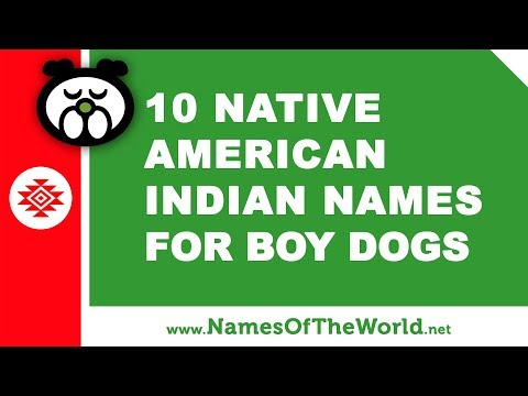 10 Native American Indian Names For Boy Dogs - The Best Pet Names - Www.namesoftheworld.net