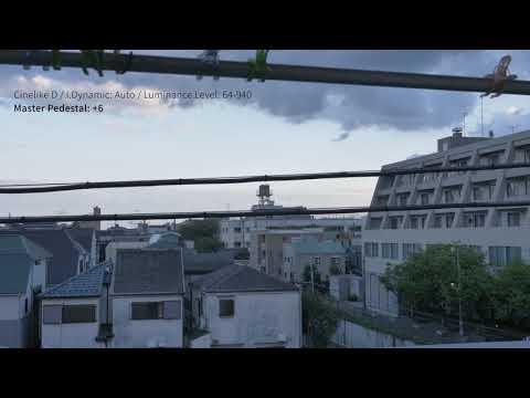 DC-GH5|輝度レベル+マスターペデスタル