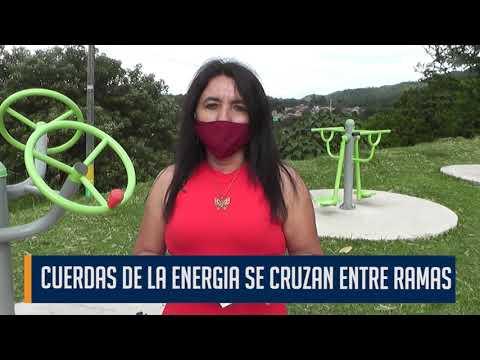 En el barrio Murillo Toro piden la urgente poda del arbolado urbano