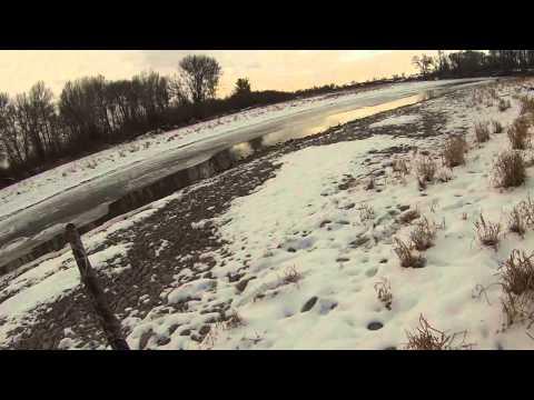 Duck Hunt-mallards Goldeneye And Greenwing Teal